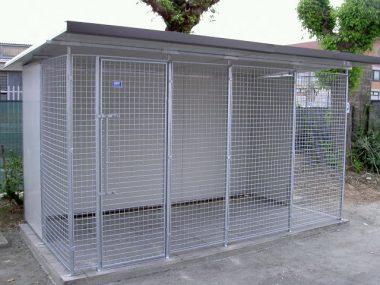 box per cani