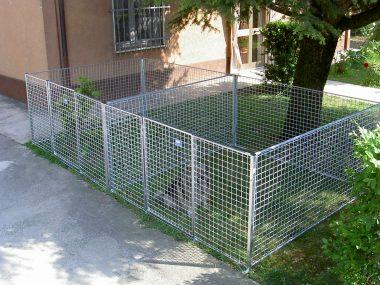 recinto cucciolata