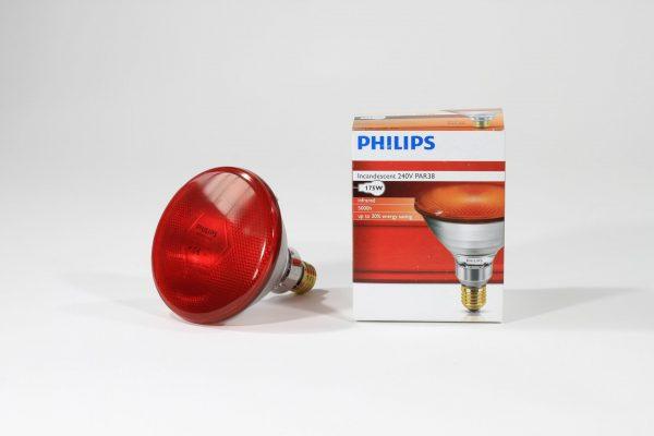 lampadina Philips Infrarossi Vetro Spesso