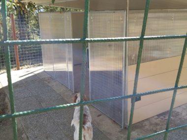 box da esterno