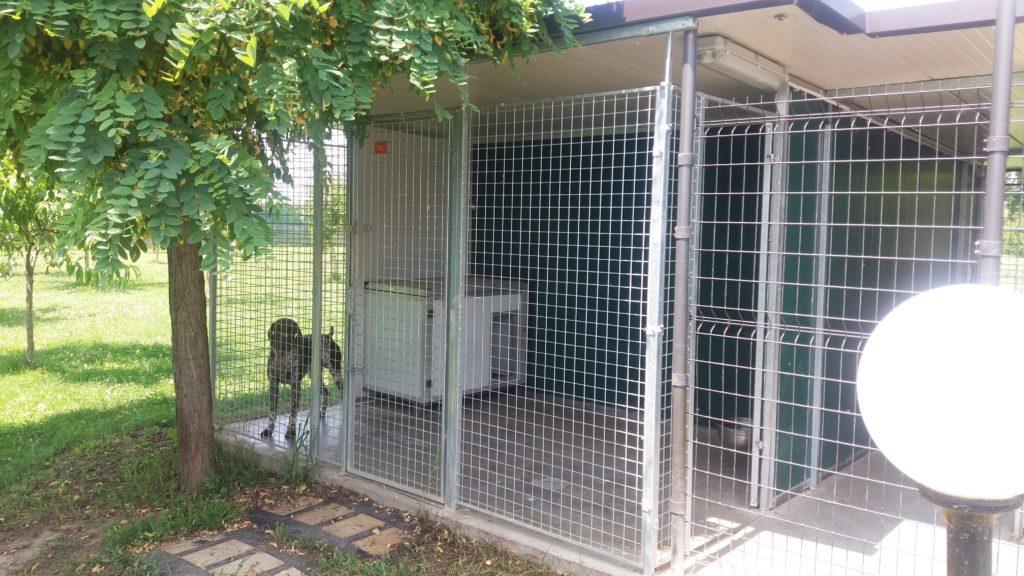 Box per cani da esterno singolo con cuccia coibentata retex for Retex box cani