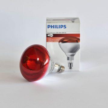lampadina a infrarossi con vetro leggero