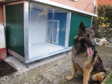 cuccia coibentata personalizzata con veranda con cane