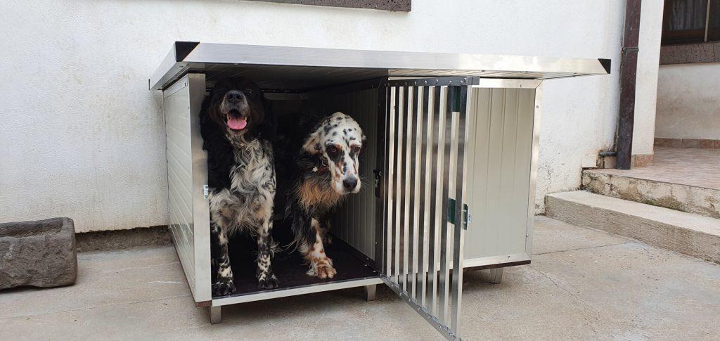 Immagine Articolo 'Qual'è la dimensione della cuccia perfetta per il mio cane?'