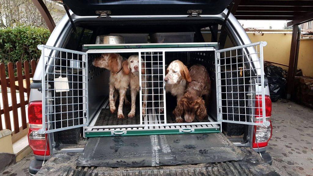 trasportino per cani per auto